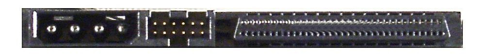 68-poliger SCSI-Anschluss an einer HDD